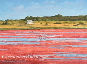 Autumn Cranberry Bog Original Painting Christopher Wheat