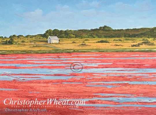 Nantucket Cranberry Harvest by Christopher Wheat