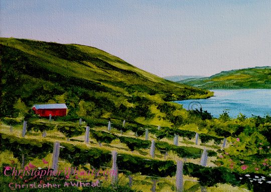 Red Barn Vine Valley, Canandaigua Lake by artist Christopher Wheat